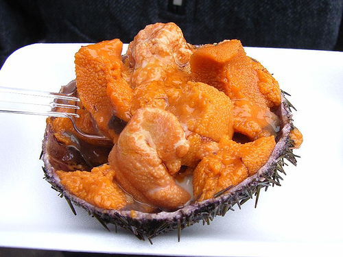 Sea urchin roe by sigusr0, on Flickr