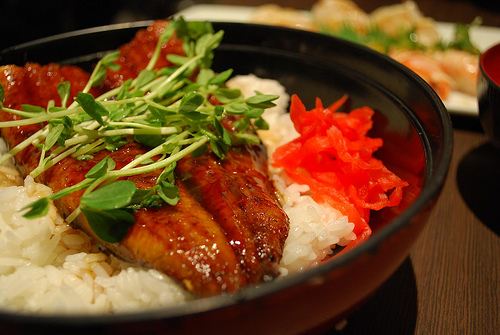 Unagi Don - Kura AUD12.90 regular by avlxyz, on Flickr