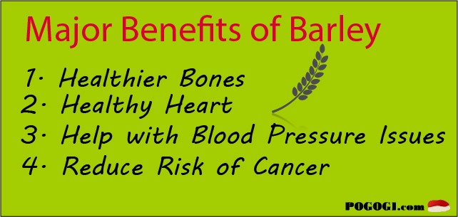 barley health fact.jpg