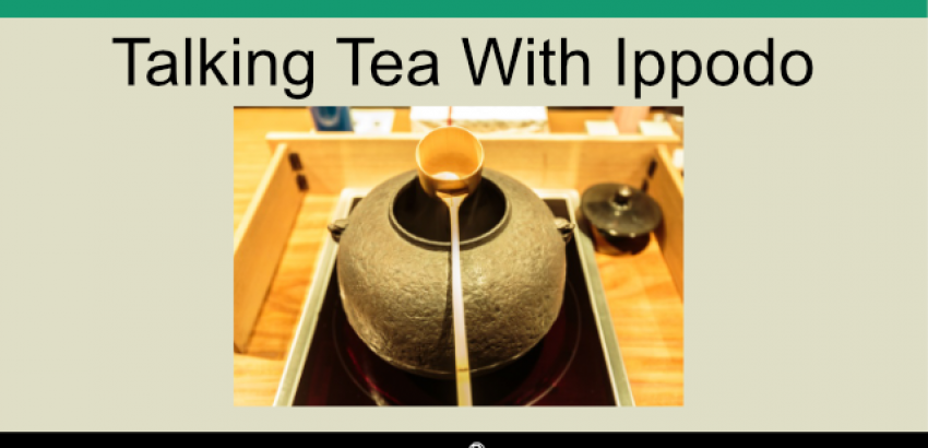podcast 8 - Ippodo tea interview cover image